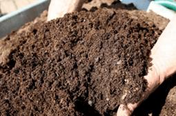 подготовка грунта для редиса