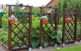 огород необходимо отделить от других территорий с помощью живой изгороди или небольшого заборчика, деревянных перегородок.